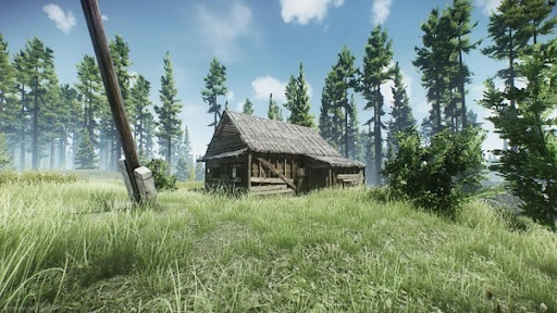 escape from tarkov woods