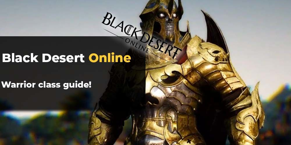 BDO Warrior Guide