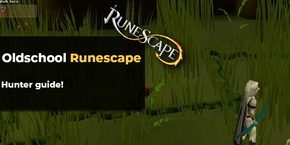osrs hunting guide