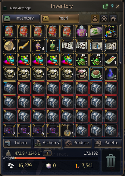 NA lvl 61 Ranger/ lvl 60 Wizard tons of Boss Gears, Items, and Pearl Items