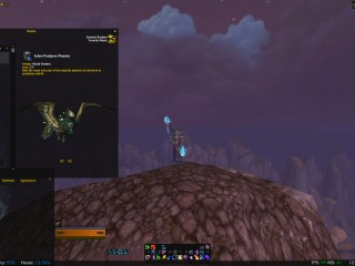 US - 110 Druid And other 100s + WoD Challenge Mode Weapons + CM MoP Phoenix + Other Rare Mounts