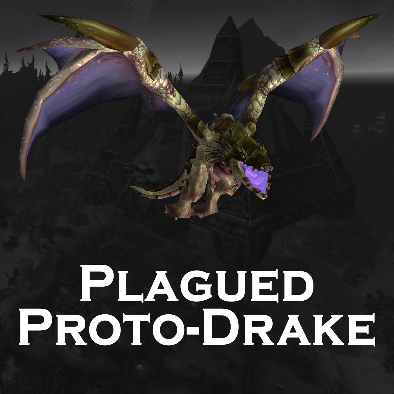 Plagued Proto-Drake | Unique Extra Rare Flying Mount | Black Market Mount Hunt | BMAH WoW Boost
