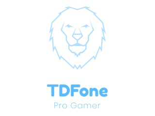 TDFone Black Desert Online Boosting Services - Do Anything You Want - NO  bots - Hand Train Only