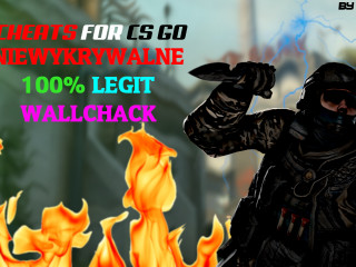 CS GO CHEATS Wallhack !!!