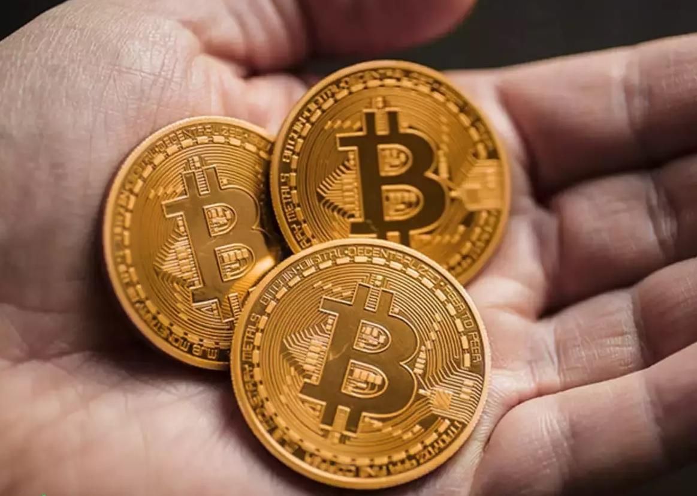 36 physical Bitcoins + Money Case (BTC)