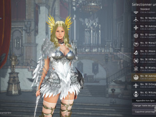 Valkyrie lvl 62, 257ap 300pd full deff 311 pd, 2668 skill p. great nomber of costume and prenum shop