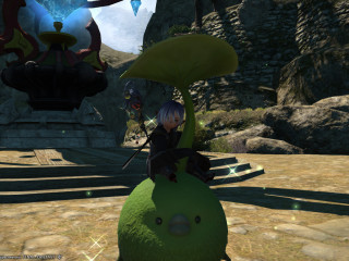 NA AETHER | All combat/gather max level | RDM/BLM/SMN i483 | RARE MOUNTS | 5.7M GILS | 300€