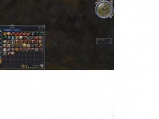 I sell my account  on Lineage 2 saga.net x50 DUALIST  50EURO