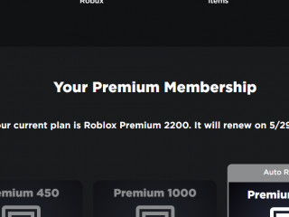 WTS RARE 2014 ROBLOX ACCOUNT (OUTRAGEOUS BUILDERS CLUB RENEWAL 2051)
