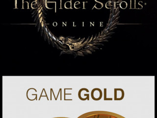 The elder scrolls online game gold PS4